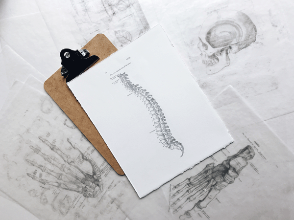 spine and clipboard